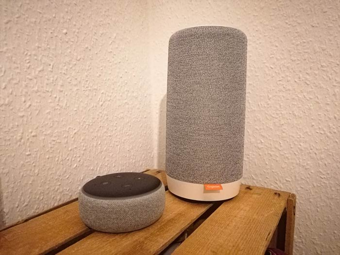 Gigaset Smart Speaker mit Echo Dot