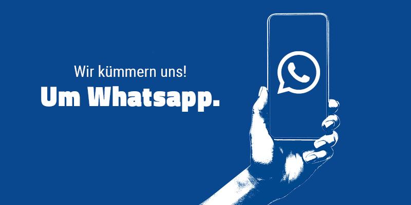 Wie bilder gesehen status whatsapp oft WhatsApp Stalker